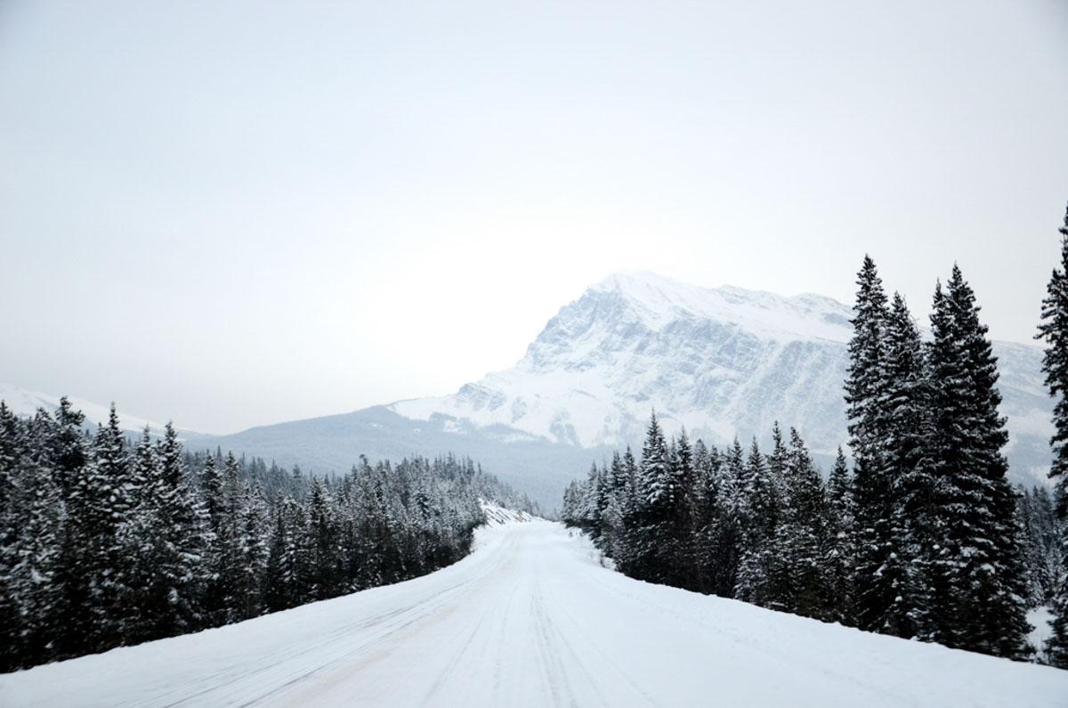 Pracovní prázdniny v Kanadě